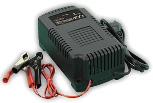 Зарядное устройство КУЛОН 100 12В